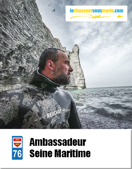 ambassadeur chasse sous marine 76