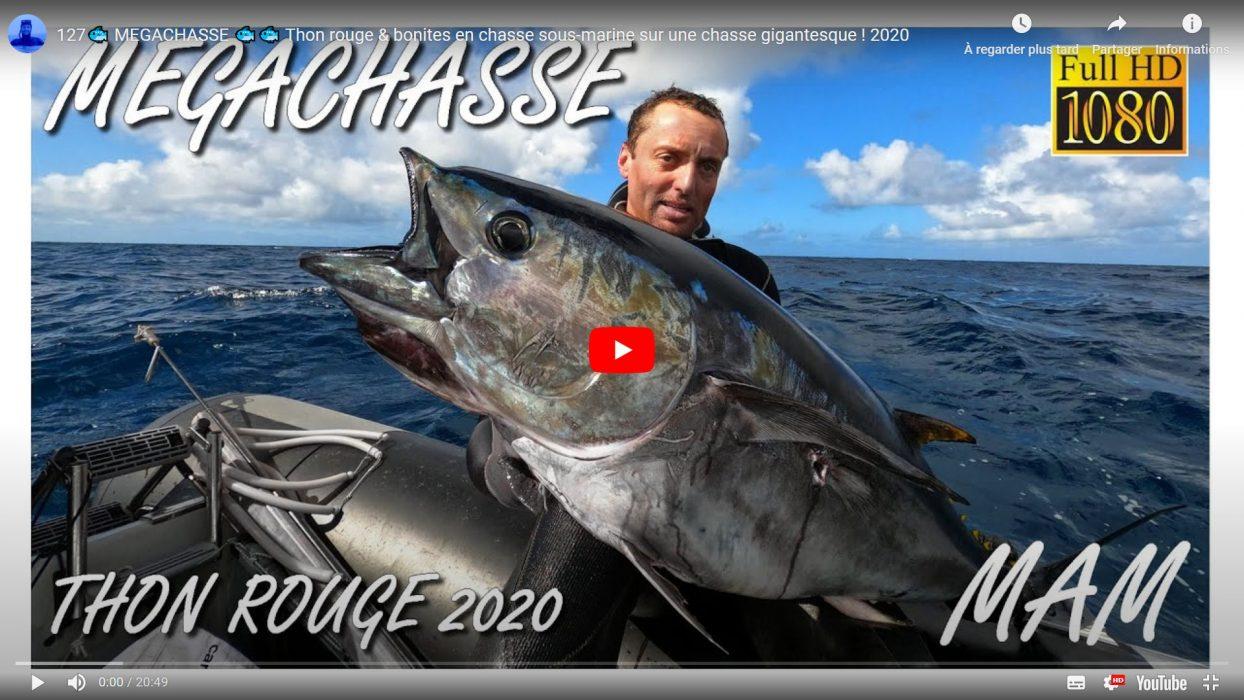 visuel film MEGACHASSE, chasse sous-marine d'un thon rouge et de bonites en Vendée par Marc-André Mounier