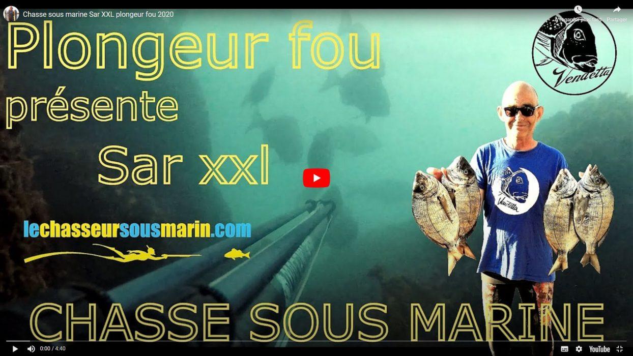 """Vidéo """"SAR XXL"""", chasse sous-marine des gros sars dans le Morbihan, par Jean-Yves Gislais, ambassadeur lechasseursousmarin.com"""